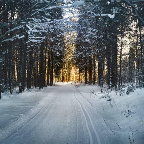 Episode 37 : « Ta vie avec »  l'hiver au Québec